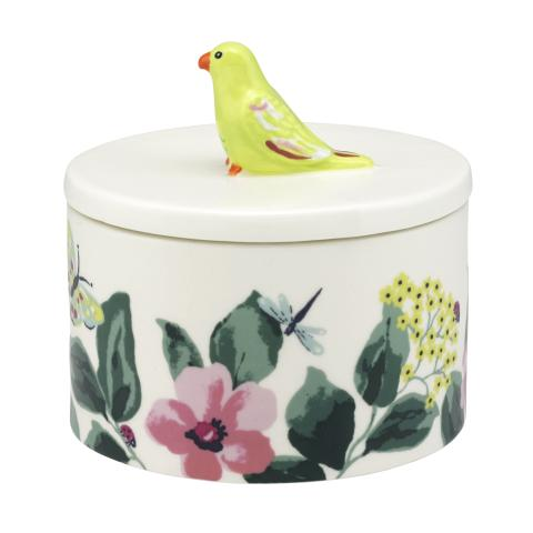 PARAKEET TRINKET POT PLAIN MULTI
